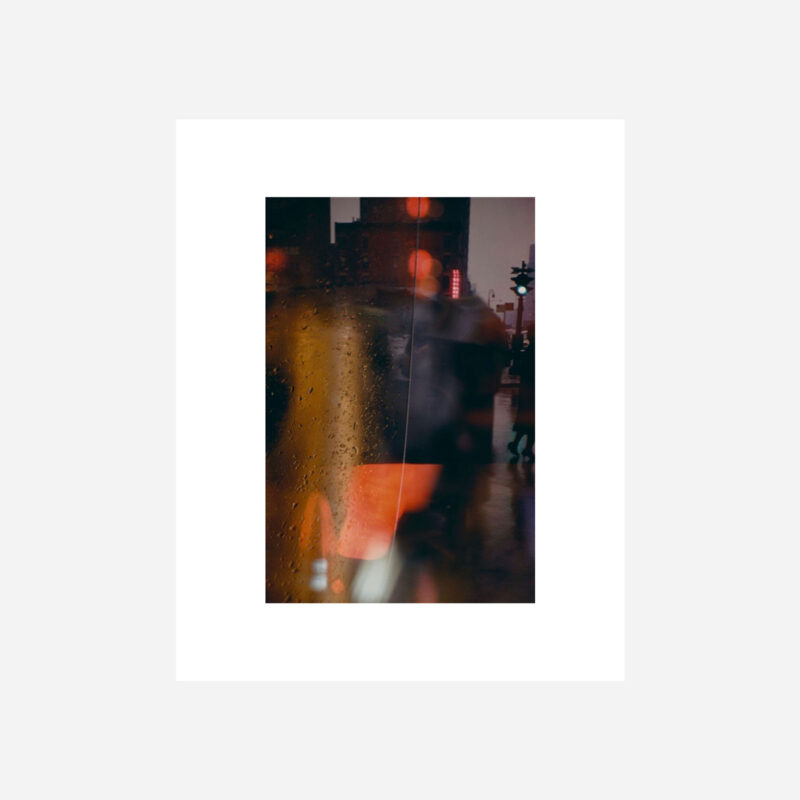 SAUL LEITER Selected Works Special Edition