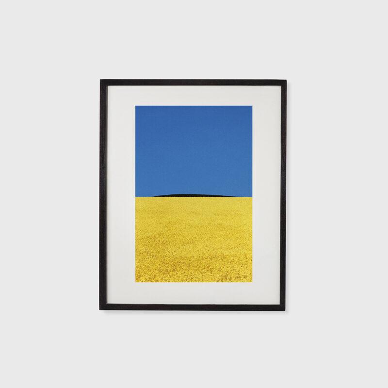 Landscape, 1978
