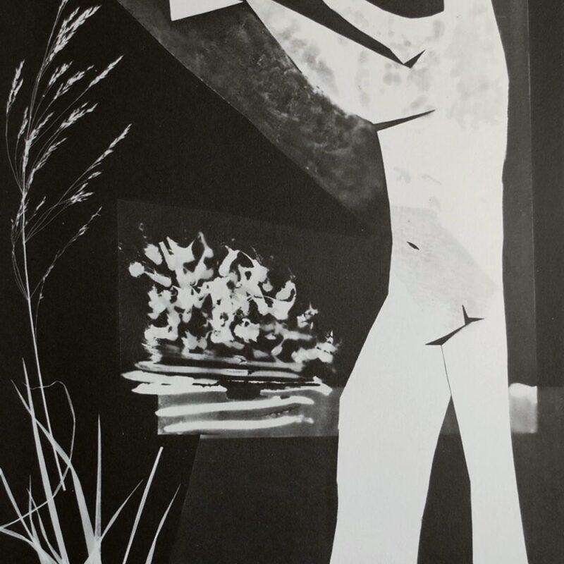 L'homme a L'oiseau, 1962